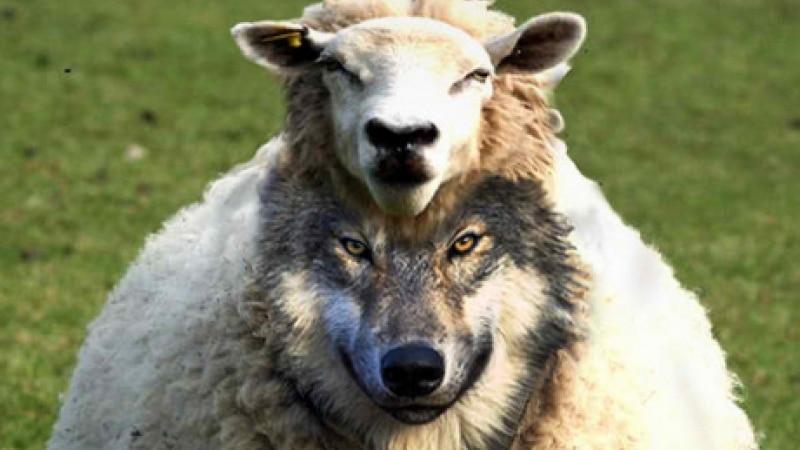 Revelation Chapter 13b False Prophet 1